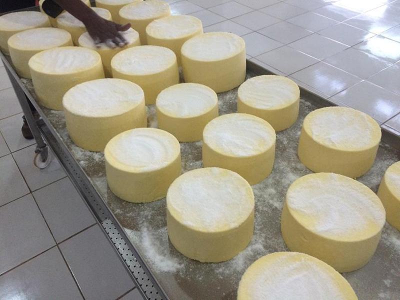 Proyecto para crear una quesería en Ruanda